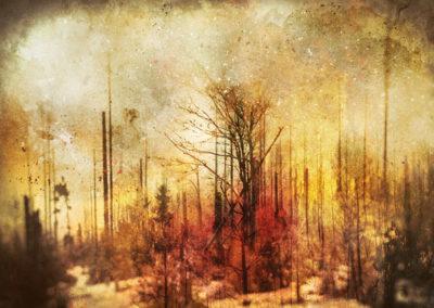 Inferno - digiART - Wabi-Sabi - Composing